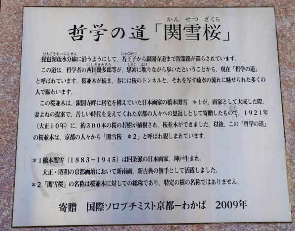 IMG_4400.JPG