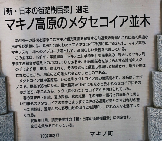 IMG_2468-2.JPG